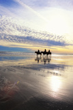 Horseback Riders on Pine Point Beach at Sunset Stampa fotografica di Robbie George