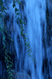 Water Rushes over a Waterfall with Branches of a Weeping Willow Tree in the Foreground Reproduction photographique par Paul Damien