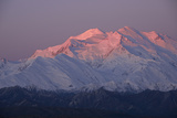 Snow-Blanketed Mount Mckinley Glowing Pink at Twilight Photographic Print by Bob Smith