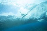 Underwater View of a Surfer on a Surfboard Fotografisk trykk av Andy Bardon