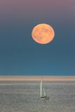 The Harvest Moon Rises over a Sailboat in Casco Bay Premium-Fotodruck von Robbie George