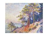 St Tropez, the Custom's Path, 1905 Giclée-Druck von Paul Theodor van Brussel