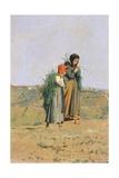 Erbaiole, 1876 Giclee Print by Niccolo Cannicci