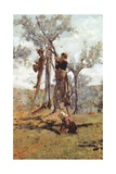 The Olive Harvest, Ca 1892 Giclee Print by Niccolo Cannicci