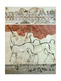 Antelopes, Akrotiri Fresco, Thera Giclée-tryk