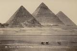 Pyramids of Giza, Egypt Lámina fotográfica