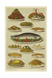 Fish and Seafood Dishes Giclée-tryk