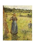 The Haymaker, 1884 Reproduction procédé giclée par Camille Pissarro