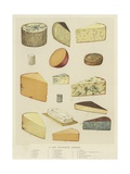 A Few Favourite Cheeses Giclée-Druck