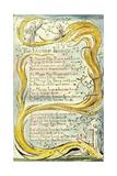 The Divine Image, 1789 Lámina giclée por William Blake
