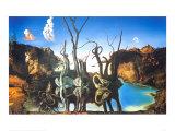 Cygnes reflétant des éléphants Affiche par Salvador Dalí