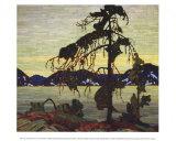 Jack Pine Prints by Tom Thomson