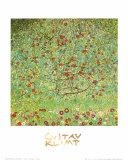 Le pommier Poster par Gustav Klimt