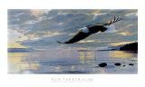 Flug bei Dämmerung Poster von Ron Parker