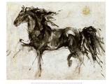 Zwart paard Lepa Zena Affiches van Marta Gottfried