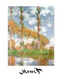 Peupliers à Giverny Affiche par Claude Monet