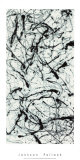Number II A Serigrafia por Jackson Pollock