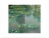 Nenúfares I 1905 Lámina por Claude Monet