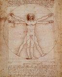 L'Homme de Vitruve, vers 1492 Affiches par  Leonardo da Vinci