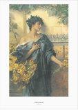 Marguerites Prints by Conrad Kiesel