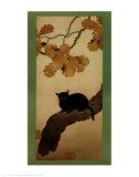 Black Cat Print by Shunso Hishida