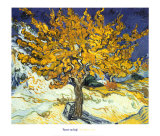 Morbærtreet, ca. 1889|Mulberry Tree, c.1889 Plakater av Vincent van Gogh
