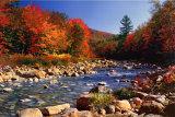 Ruisseau à l'automne Poster