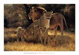 Pride's Proud Family Art by Dino Paravano