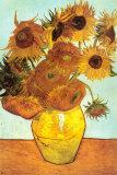 Auringonkukkia (Sunflowers), noin 1888 Posters tekijänä Vincent van Gogh