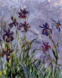 Schwertlilien (Ausschnitt) Poster von Claude Monet