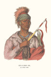 Ne-O-Mon-Ne, an Ioway Chief Posters by  McKenney & Hall