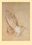 Praying Hands Prints by Albrecht Dürer