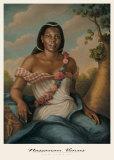 Nassauan Venus Poster por Tim Ashkar