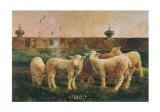 Five Lambs, 1988 Prints by Richard Yaco