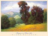 Poppies en Plein Air Poster by Diana Reineke