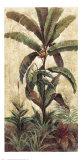 Exotic Palms II Posters tekijänä Eduardo Moreau