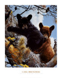 Aventura en las alturas Láminas por Carl Brenders