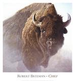 Hövding|Chief Poster av Robert Bateman