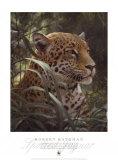 Symbol of the Rainforest Posters av Robert Bateman