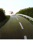 Highway Pig Poster by Michael Sowa