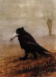 Cuervo Póster por Rudi Hurzlmeier