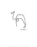 De kameel Print van Pablo Picasso