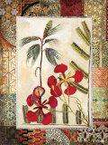 Garden Tropicalismo I Pôsters por John Douglas