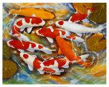 鯉 ポスター : B. リー