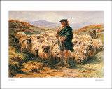 Highland Shepherd Prints by Rosa Bonheur
