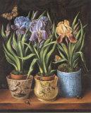 Pots with Narcissus Posters by Milieu Du Ciel