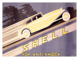 Shell, Anti-Knock Giclee Print by  Yunge