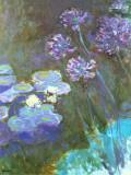 Water Lilies and Agapanthus Kunstdrucke von Claude Monet