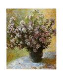 Viso di Malva Posters af Claude Monet
