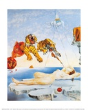 Rêve causé par le vol d'une abeille autour d'une pomme-grenade, vers 1944 Affiches par Salvador Dalí
